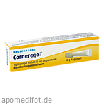 CORNEREGEL Augengel